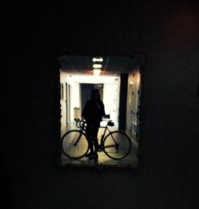 Bike Reflection